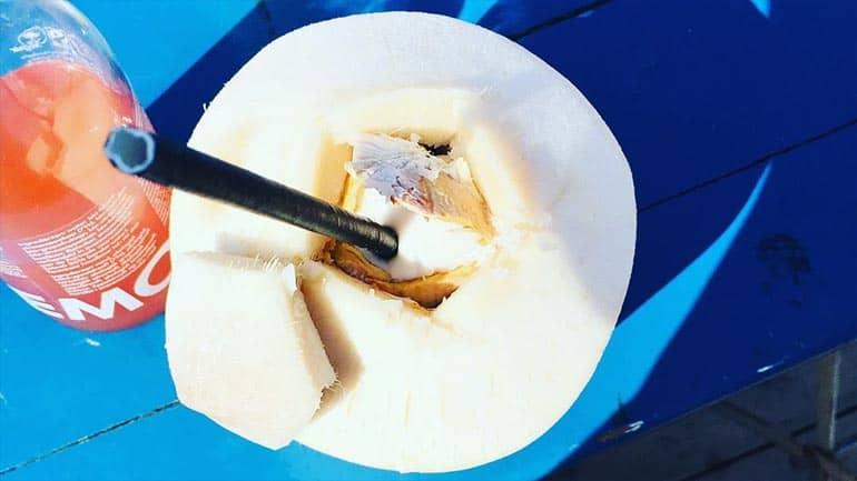 Cocosnoot op foodfestival